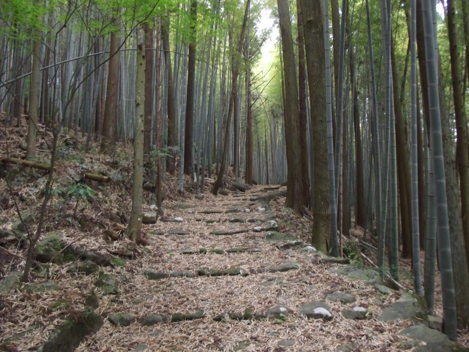 Ishizaka Stone-Paved Road