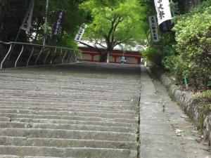 A difficult climb, but worth it!